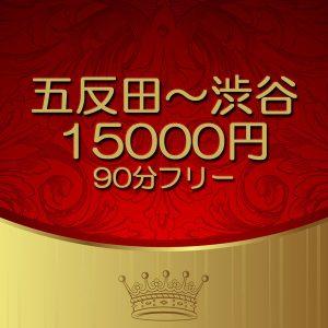 五反田9-渋谷90分15000円イベント情報